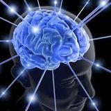Roberto Moreno - Mental brain. 2010