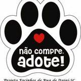 Viva Voz - Animais de Rua | 01/04/2014