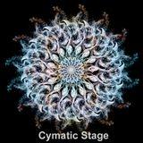 Alucine - Sincronias del camino - Cymatic Stage @Zuvuya Festival 2013