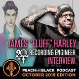 James 'Fluff' Harley Talks Prince's 20ten album