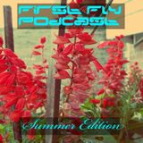 First Fly Podcast Summer Edition