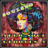 Afro Soul Grooves 5