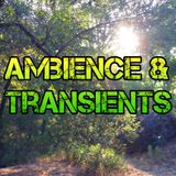 Ambience & Transients 036 - KCSB (06-22-15)