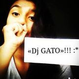 MixFiestas Patrias - Dj Gato - Illimo ...20155....