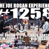 #1258 - Jack Dorsey, Vijaya Gadde & Tim Pool