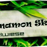 Cinnamons Spielwiese Promomix 2007
