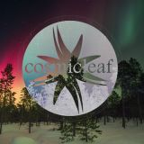 Discovering Cosmicleaf #15 by Dense