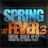 SPRING FEVER 3: DaNcEHaLL Vs AfROBeAT Vs HiPHoP Vs ReGGaEtoN