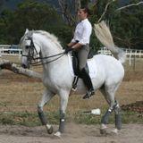 HorseSense Episode 7 - Enlightened Dressage  with Grand Prix Dressage rider and coach Catherine Birm