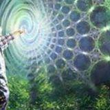 Extrait d'une séance d'hypnose en ligne (vie antérieure et rencontre avec des êtres de la nature)