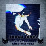 BLACKFOX RECORDS guestmix #013 by Tribal Dubs