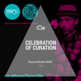 Celebration of Curation 2013 #USA: Peanut Butter Wolf #TDO279 - Stones Throw Mix