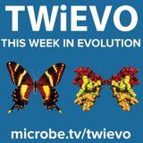 TWiEVO 35: Strawberry sex chromosomes forever