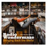 Radio Wondermaze (Bringing Back the Blend)