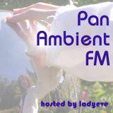 PanAmbientFM_93