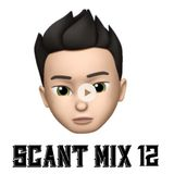 Scant Mix 12
