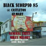 Black Scorpio @ Castleton  St Mary-  ( rewind 14 times) General trees - Mikey Melody- P Screw 85 #07