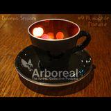 Arboreal Presents: Espresso Sessions #9: Pluviophile Nocturne