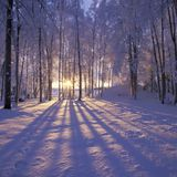 winter solstice-mix