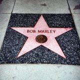 Bob Marley Homage Mix
