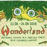Leela Loops @ Waldfrieden Wonderland 2018 - Chillspace - Psychill