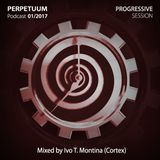 PERPETUUM Podcast 01/2017 (progressive session)