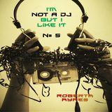 Roberta Ayres @ I'm Not A DJ (But I Like It) N# 5