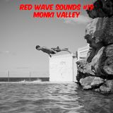 RED WAVE SOUNDS #19 MONKI VALLEY