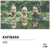DJ LAB / 003 / Kapibara