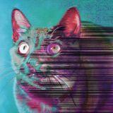 Evil Raw Cat