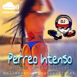 Perreo Intenso -  SummerMix2k18 - Dj Allan