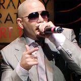 Pitbull Best Mix Plus α