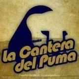 Programa 2 Cantera del Puma