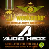 Audio Hedz @ The Ideal Tidy Weekender 5th April 2014