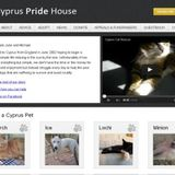 Cats & Dogs in Cyprus need help!!