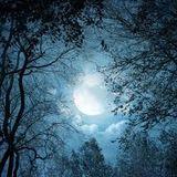 Deep Moon Sesion By Trevi Tj