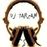 Dj Tarzan - Party Vibes Part 1
