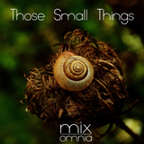 Those Small Things - Liquid Drum & Bass Mix