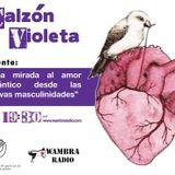 Calzón Violeta - Una mirada al amor romántico desde las nuevas masculinidades 080515