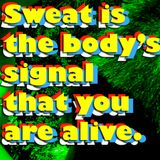 Sweat is the body's signal that you are alive (2013)