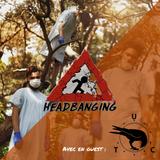 Headbanging - 20.07.2017 - Du sang, du vomis et du metalcore avec Under The Crows