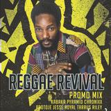 REGGAE REVIVAL MIX Kabaka Pyramid Concert Promotion