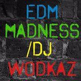 EDM MADNESS live @ButchBar /DJ WODKAZ [FUTURE HOUSE]
