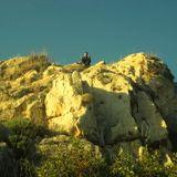 «Κρότος Ευθάνατος» | Σαμσών Ρακάς