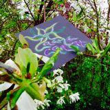 CremeCrashs Springbeginn Mix