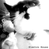 Electro Mix Du Pantherdash