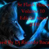 SR FLASH HOUSE VOLUME 10. EDIÇÃO ANOS 2000   ( MELHORES DA ´DÉCADA )   BY DJ RICARDO BACANA