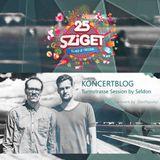 "Koncertblog ""Kollektiv Turmstrasse session"" mixed by Seldon (Budapest in the dark)"