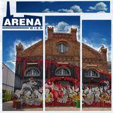 Arena Special: A Lapis_rufus & Kidsolis Synergy