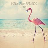 I only speak Flamingo